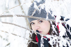 Hide and Seek in Snow Stock Photography