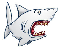 Hideous Shark Royalty Free Stock Photography