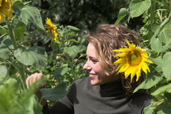 Hiding behind the sunflowers Royalty Free Stock Images