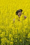 Hiding in the colza field. A woman hiding in a yellow field of colza Royalty Free Stock Photo