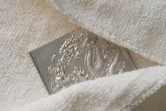Hiding engraving dragon Royalty Free Stock Photography