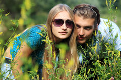 Hiding in a grass Stock Photography