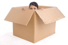 Hiding inside the box Royalty Free Stock Photos