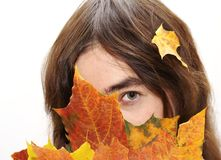 Hiding in the leafs Royalty Free Stock Images