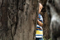 boy hiding Stock Image