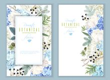Hidrangea winter banners. Vector floral banners with blue hydrangea, tulip flowers, conifer branches on white. Romantic winter design for christmas, new year royalty free illustration