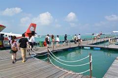 Hidroavião, homem, Maldivas Fotografia de Stock