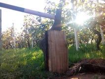 Hieb-Holz stockfoto