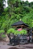 Hiebhöhle (Goa Lawah) Stockbilder