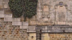 Hiedra, escaleras, muelle Imagen de archivo