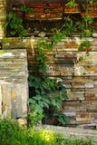 Hiedra y pared de piedra Imágenes de archivo libres de regalías