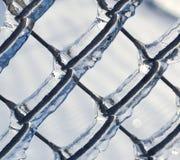 Hiele la cerca revestida de la alambrada de una tormenta de hielo Fotos de archivo libres de regalías