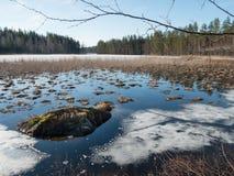 Hielo de fusión en el prado de la inundación Fotos de archivo