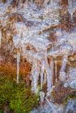 Hielo de fusión en la superficie cubierta de musgo de la roca fotografía de archivo