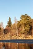 Hielo de fusión en un lago de la primavera Foto de archivo