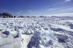 Hielo de paquete Groenlandia del este Fotos de archivo