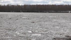 Hielo del río que deshiela almacen de video