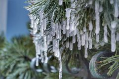 hielo en árbol Imágenes de archivo libres de regalías