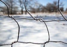 Hielo en el alambre de la cerca Fotos de archivo