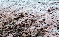 Hielo en la tierra Fotografía de archivo libre de regalías