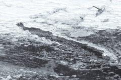 Hielo en superficie del río Foto de archivo libre de regalías