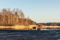 Hielo en un lago de la primavera Imagen de archivo libre de regalías