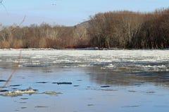 Hielo flotante en el río Susquehanna Foto de archivo libre de regalías
