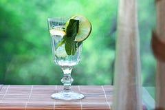 Hielo hecho en casa de la menta de limón de la limonada Fotografía de archivo