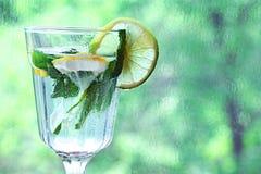 Hielo hecho en casa de la menta de limón de la limonada en a Imagen de archivo libre de regalías