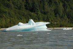 Hielo parido del glaciar de Mendenhall, Juneau, Alaska imagenes de archivo