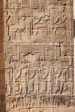 Hieróglifos egípcios antigos cinzelados na pedra no templo de Philae em Aswan Egito fotografia de stock royalty free
