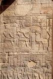 Hieróglifos egípcios antigos dos deuses no templo de Philae em Aswan imagem de stock