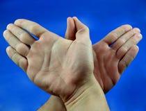 Hier zijn twee handen zoals een vogel Royalty-vrije Stock Afbeelding