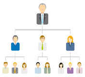 Hierarchical tree diagram / Business structure. Pyramid Hierarchical tree diagram / Traditional business Royalty Free Stock Photo