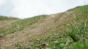 Hierba alta en la colina llena de grava almacen de metraje de vídeo