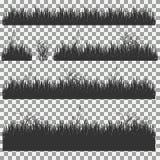 Hierba, arbustos Un sistema de diversos tipos de hierba Sistema de hierba en un fondo transparente Foto de archivo