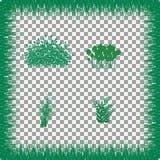 Hierba, arbustos Un sistema de diversos tipos de hierba Sistema de hierba en un fondo transparente Fotos de archivo libres de regalías