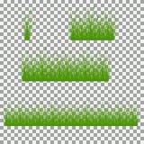 Hierba, arbustos Un sistema de diversos tipos de hierba Sistema de hierba en un fondo transparente Fotos de archivo