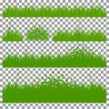 Hierba, arbustos Un sistema de diversos tipos de hierba Sistema de hierba en un fondo transparente Imagen de archivo