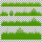 Hierba, arbustos Un sistema de diversos tipos de hierba Sistema de hierba en un fondo transparente Fotografía de archivo