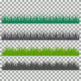 Hierba, arbustos Un sistema de diversos tipos de hierba Sistema de hierba en un fondo transparente Imágenes de archivo libres de regalías