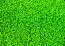 Hierba artificial Foto de archivo libre de regalías