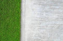 Hierba artificial en una pared del cemento Imagenes de archivo