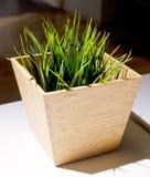 Hierba artificial verde en un pote de madera Fotografía de archivo libre de regalías