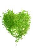 Hierba bajo la forma de corazón Imagen de archivo libre de regalías