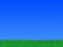 Hierba brillante verde antes del horizonte. Fotografía de archivo