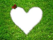 Hierba con un corazón fotos de archivo