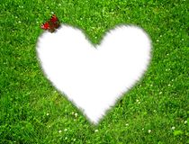 Hierba con un corazón fotografía de archivo