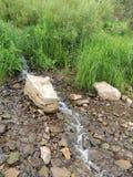 Hierba corriente de la piedra del arroyo de la ladera Imagenes de archivo