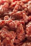 Hierba cruda orgánica Fed Ground Beef Imágenes de archivo libres de regalías